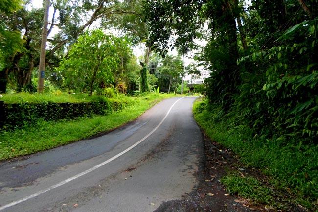 Дорога в Убуде