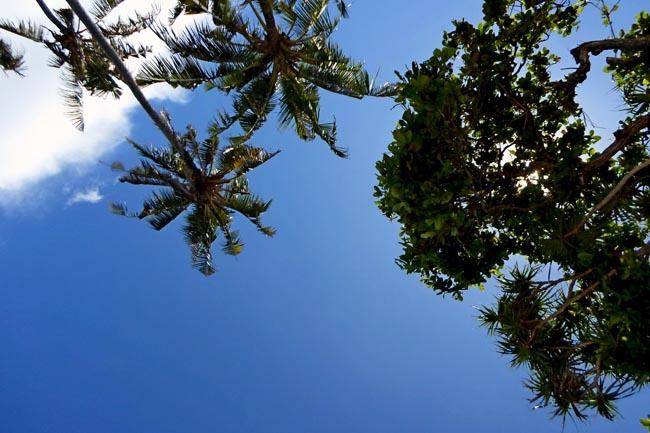 Солнце на Бали