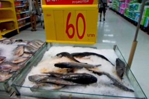 Рыба на Самуи ценник